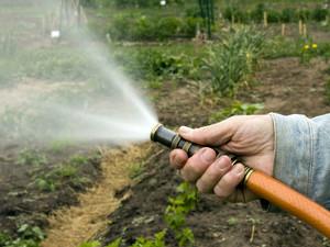 Как провести воду на дачный участок