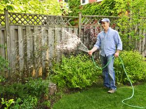 Садовые работы в июне