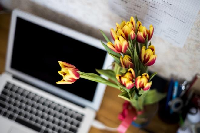 Букет тюльпанов у ноутбука